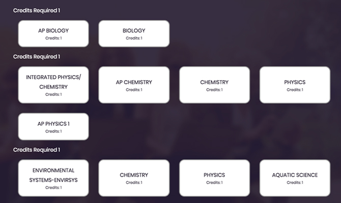 Screenshot showing graduation plan builder. Buttons representing different science class options