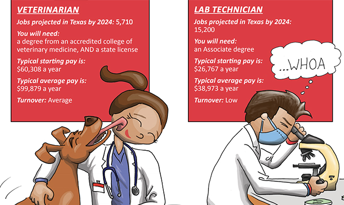 Screenshot: Cartoons of veterinarian and lab technician with job statistics